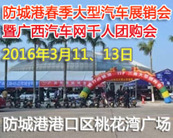 2016广西汽车网(防城港)千人团购车展